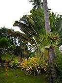 Pearl Farm Beach Resort :DSCN4846.JPG