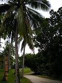 Pearl Farm Beach Resort :DSCN4847.JPG