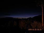 阿里山:DSCN4955.JPG