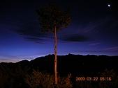 阿里山:DSCN4957.JPG