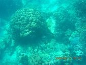 長灘島環島:DSCN4770.JPG