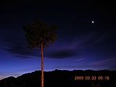 阿里山:DSCN4958.JPG