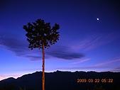 阿里山:DSCN4959.JPG
