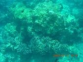 長灘島環島:DSCN4773.JPG