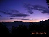 阿里山:DSCN4969.JPG