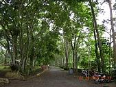 大堡週邊景點:DSCN5063.JPG