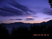 阿里山:DSCN4972.JPG