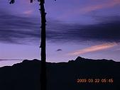 阿里山:DSCN4974.JPG