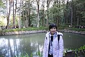 阿里山:IMG_0146.JPG