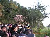 阿里山:DSCN4978.JPG