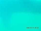 Dosonl 與鯨鯊共游:DSCN4895.JPG