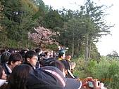阿里山:DSCN4979.JPG