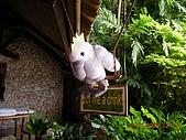 Pearl Farm Beach Resort :DSCN4892.JPG