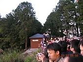 阿里山:DSCN4980.JPG