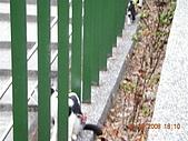 基隆中正公園:DSCN0934.JPG