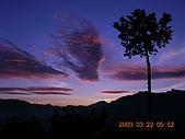 阿里山:DSCN4982.JPG