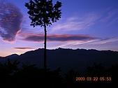 阿里山:DSCN4983.JPG