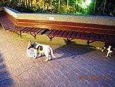 基隆中正公園:DSCN0939.JPG