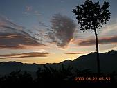 阿里山:DSCN4985.JPG
