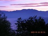 阿里山:DSCN4986.JPG
