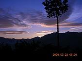 阿里山:DSCN4990.JPG