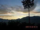 阿里山:DSCN4991.JPG