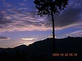 阿里山:DSCN4997.JPG