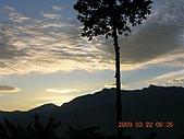阿里山:DSCN4998.JPG