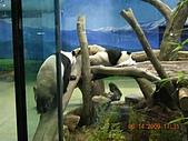 台北市立木柵動物園:DSCN7591.JPG