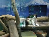 台北市立木柵動物園:DSCN7593.JPG