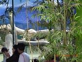 台北市立木柵動物園:DSCN7596.JPG