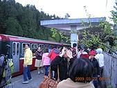 阿里山:DSCN5024.JPG