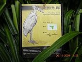 台北市立木柵動物園:DSCN7612.JPG