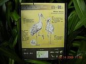 台北市立木柵動物園:DSCN7613.JPG