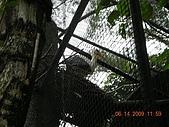 台北市立木柵動物園:DSCN7614.JPG
