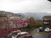 清境小瑞士花園:IMG_2353.JPG