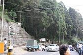阿里山:IMG_0432.JPG