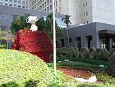 台北市政府 :IMG_1857.JPG