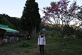 阿里山:IMG_0114.JPG