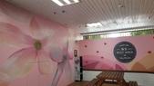 日誌用相簿:牆彩繪,牆壁彩繪,彩繪牆壁,油漆彩繪,牆面彩繪,外牆彩繪,美化彩繪,室內彩繪,圍牆美化彩繪