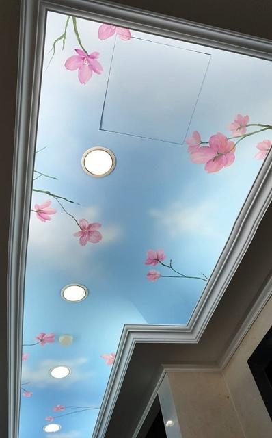天花板油漆彩繪,星空彩繪,星空牆壁彩繪,天花板星空彩繪價格,星空彩繪天花板,彩繪天花板 - 日誌用相簿