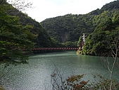大井川之八橋小道:R0017492.jpg