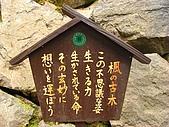 京都洛北鞍馬貴船上賀茂:R0027204.jpg
