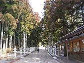 世界遺產高野山:R0024487.jpg