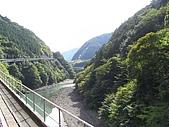 大井川之八橋小道:R0017494.jpg
