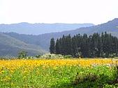 海角三號之滿洲鄉:RIMG0081.jpg