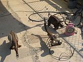 2008鋼雕藝術節:R0020491.jpg