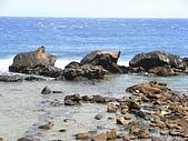海角三號之滿洲鄉:RIMG0101.jpg