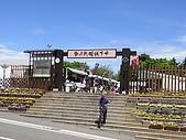 靜岡掛川城:R0013443.jpg