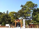 京都洛北鞍馬貴船上賀茂:RIMG0213.jpg
